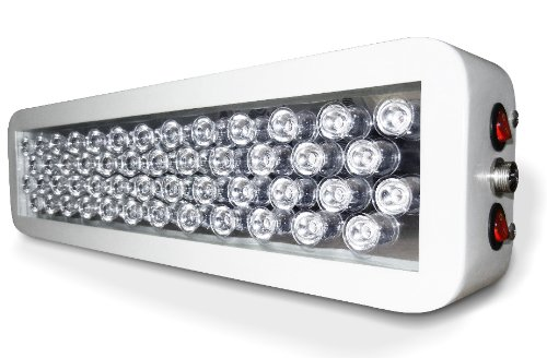 Advanced Platinum Series LED