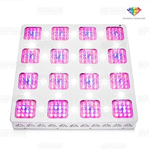 Diamond Series LED Lights