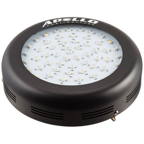 Apollo LED Lights