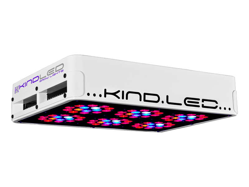 Kind Vector LED