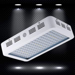 KingTM LED Grow Light Review 400w Full Spectrum